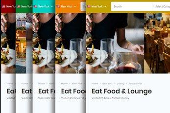 Customized Color Scheme - Listing Plus Directory Theme