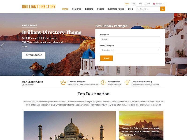 The Brilliant Directory Theme