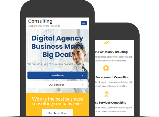 Consulting Busines Theme
