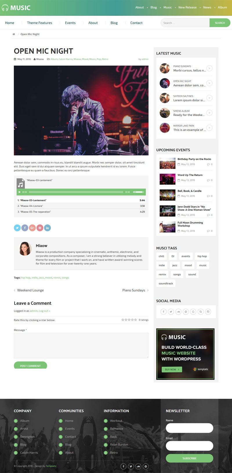 The Music Theme's Blog Post Page