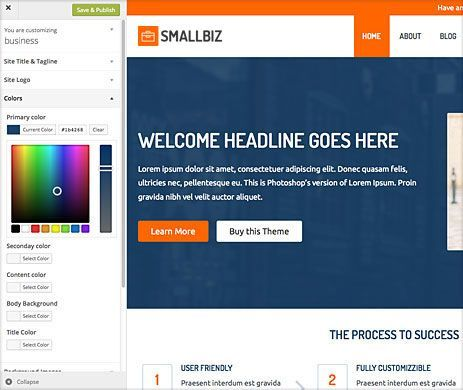 Unlimited color schemes - Small Business WordPress Theme