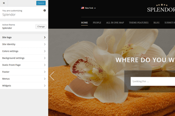 WordPress splendor Theme