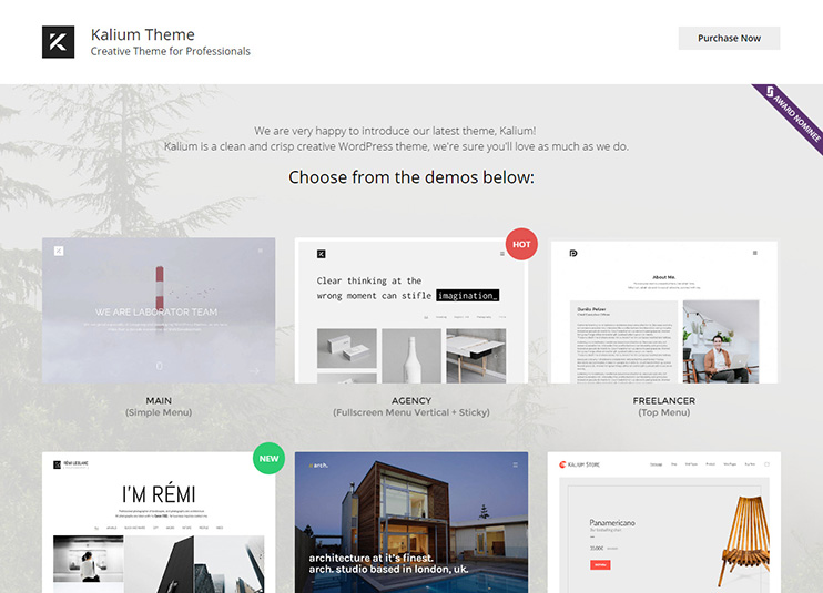 Kalium - Creative Theme for Professionals at themeforest
