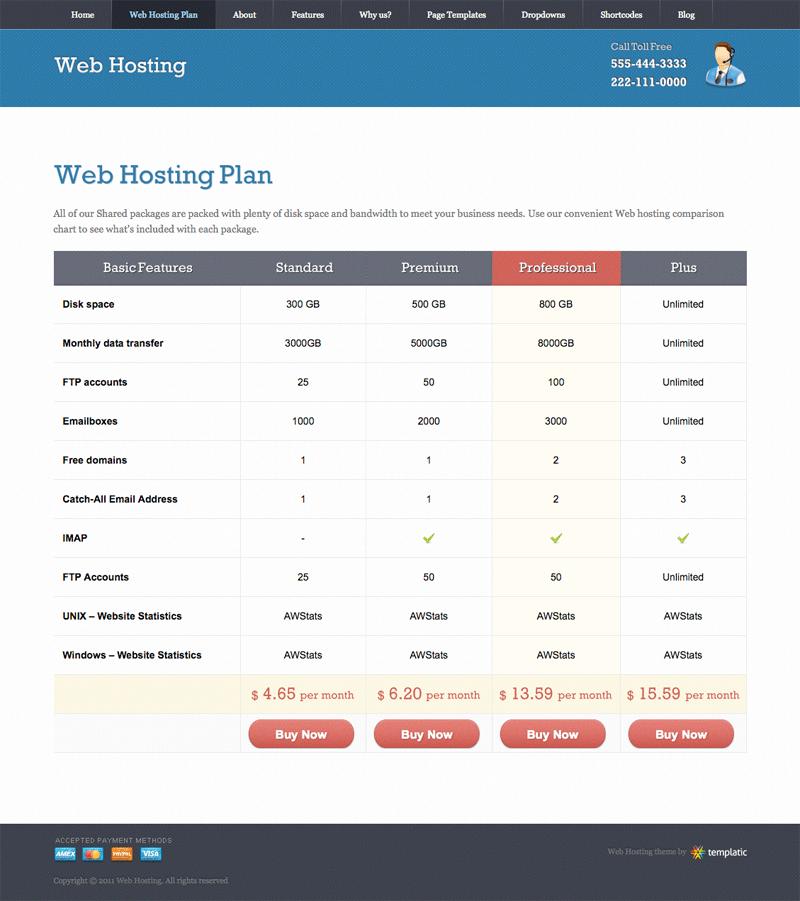 A Sample Web Hosting Company Business Plan Template