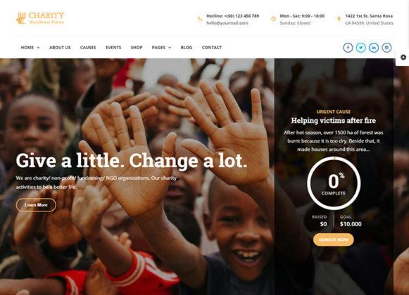Charity WP Theme