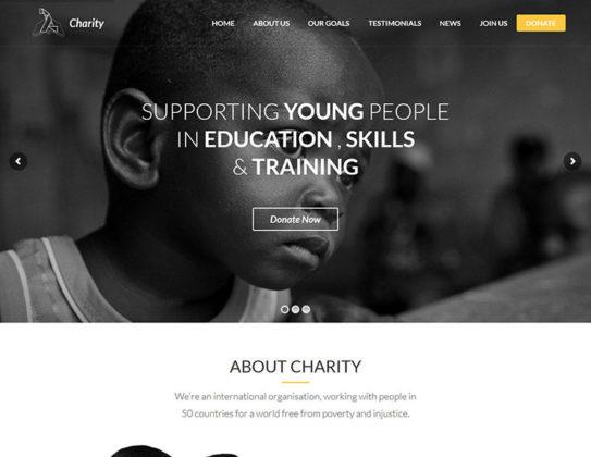 Lambda Charity Theme