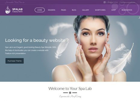 32+ Best Health beauty WordPress theme for Beauty Salon, Massage ...