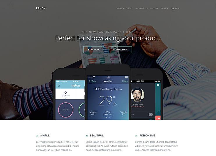 Landy Landing Page WP Theme
