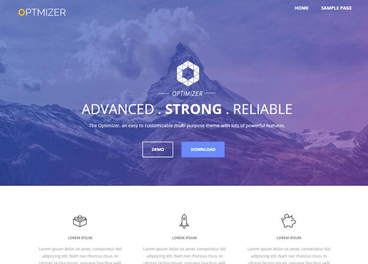 Optimizer WP Theme