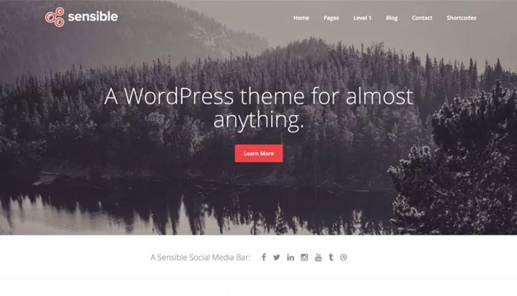 Sensible WordPress Theme