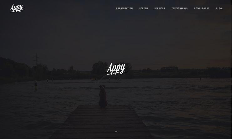 Appy WP Theme