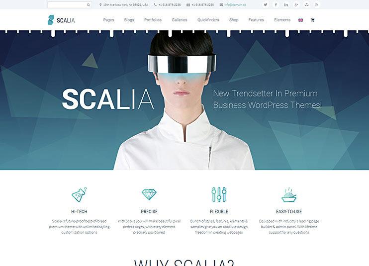Scalia WP Theme