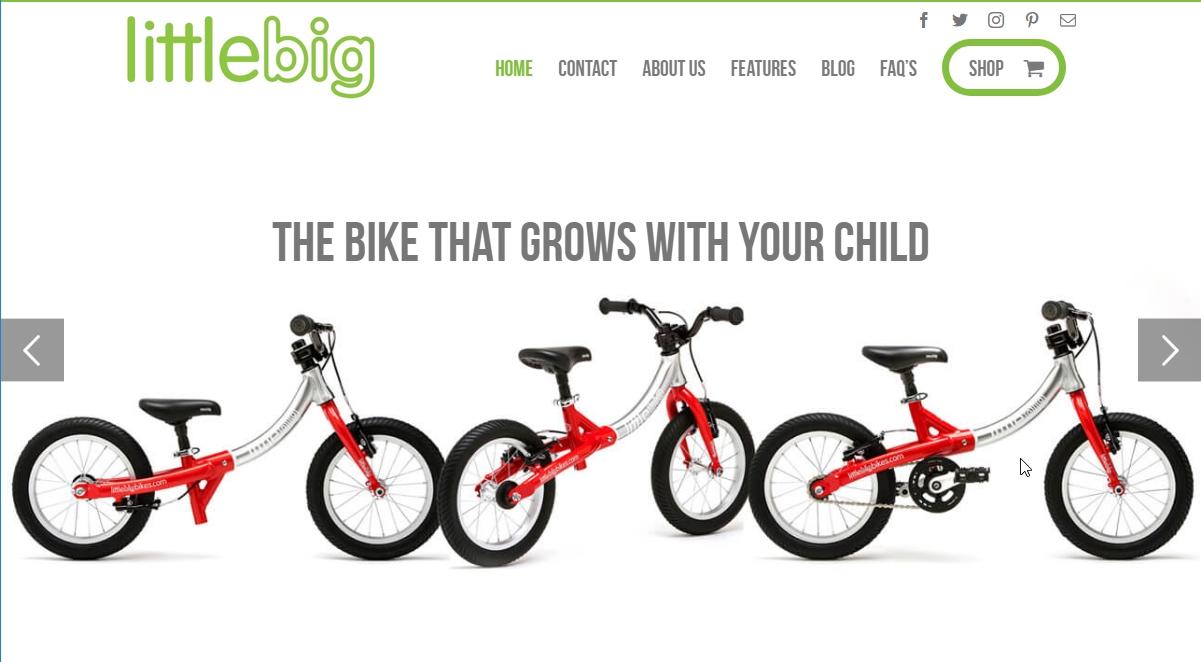Avada eCommerce example