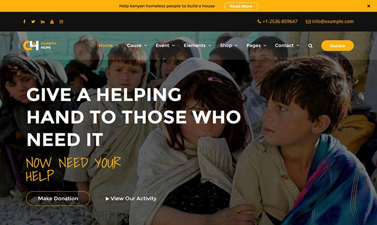 Charity Hope WP Theme