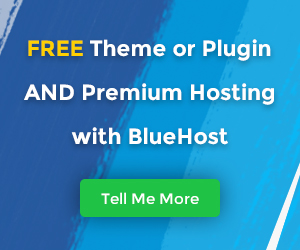 Bluehost Ad banner