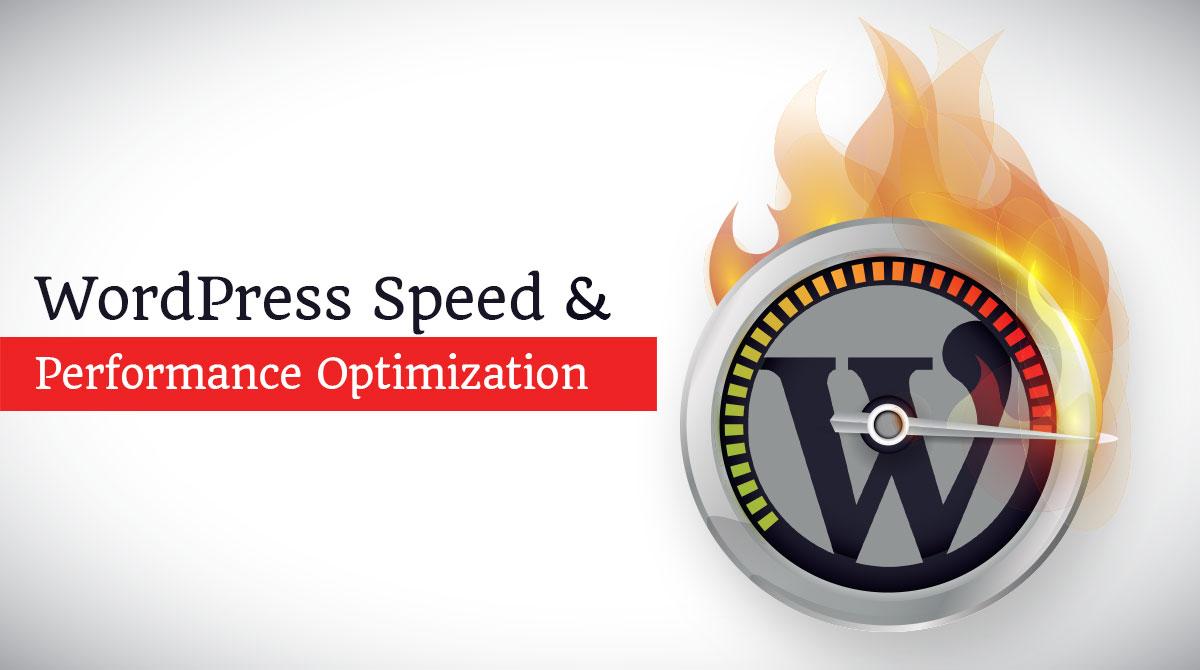 declutter WordPress database