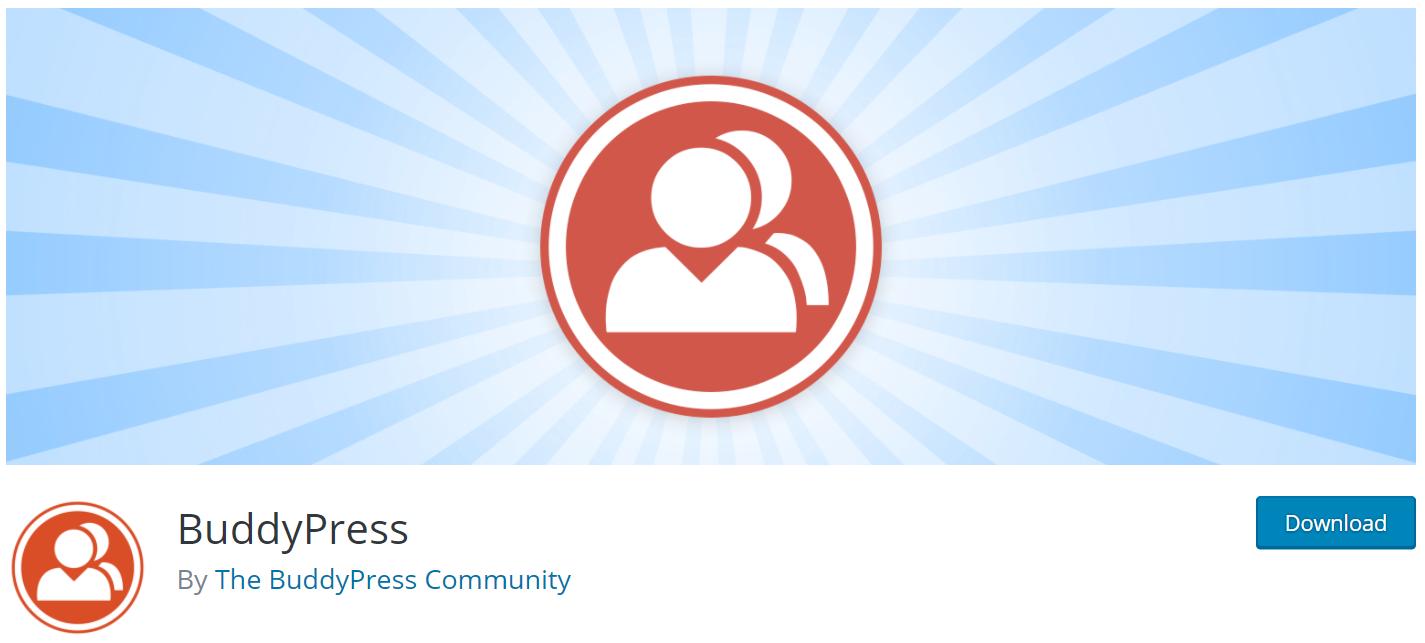 BuddyPress WordPress Theme