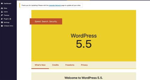wordPress 5.5 features