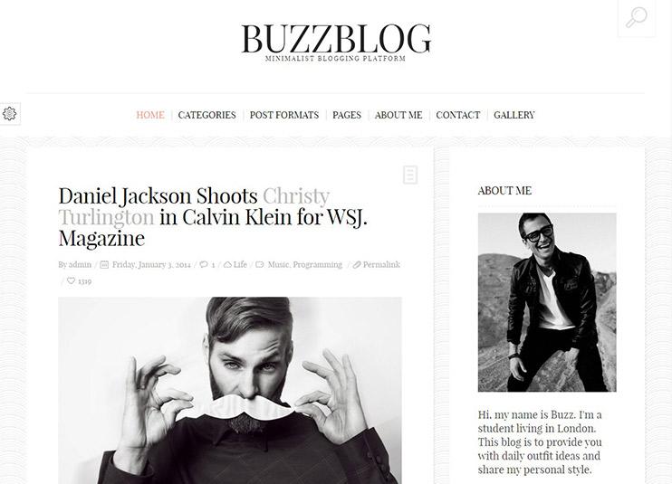 BuzzBlog---Clean-&-Personal-WordPress-Blog-Theme